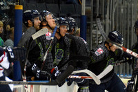Blades Vs Stingrays 101714